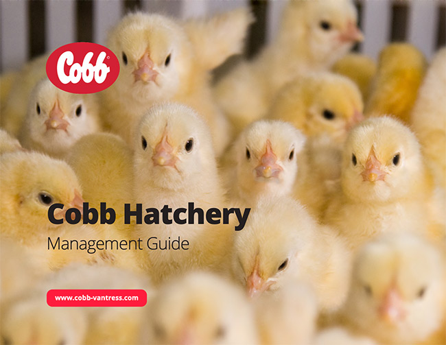Cobb Hatchery Management Guide Cover