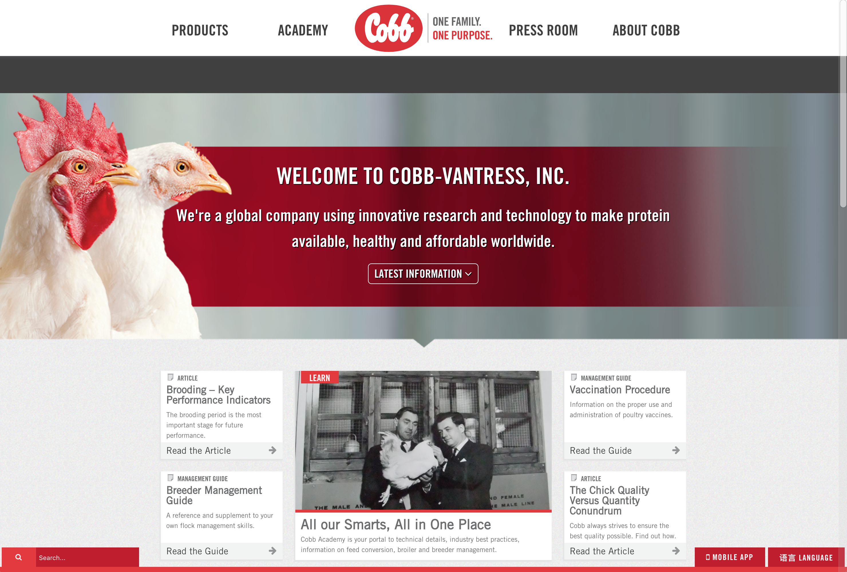 Cobb's Previous Website